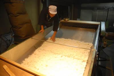 お米の放冷